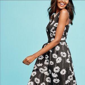 Talbots | Daisy Floral Fit & Flare V Neck Dress